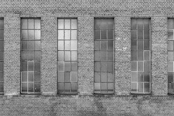 Muur van Glas en Steen van Wesley Flaman