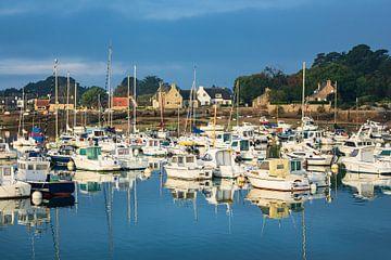 Hafen in der Bretagne in Ploumanach, Frankreich von Rico Ködder