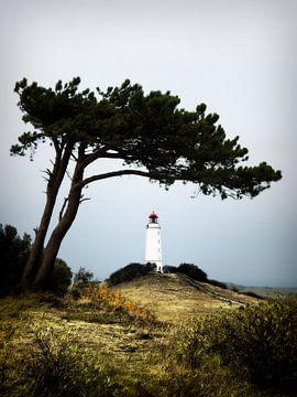 Hiddensee - Leuchtturm Dornbusch von Alexander Voss