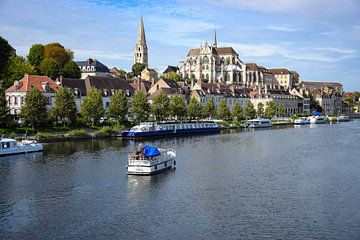 Auxerre van Ingrid de Vos - Boom