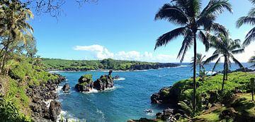 Waianapanapa Black Sand Beach, Hawaii, Maui van Martina Dormann