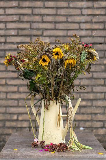 een oude gieter met verdroogde zonnebloemen