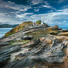 Phare de Castle Point Nouvelle-Zélande sur FineArt Prints | Zwerger-Schoner |