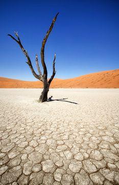 Deadvlei in Sossusvlei, Namibia van Fotografie Egmond