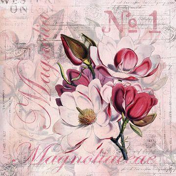 Magnolien Nostalgie van Andrea Haase