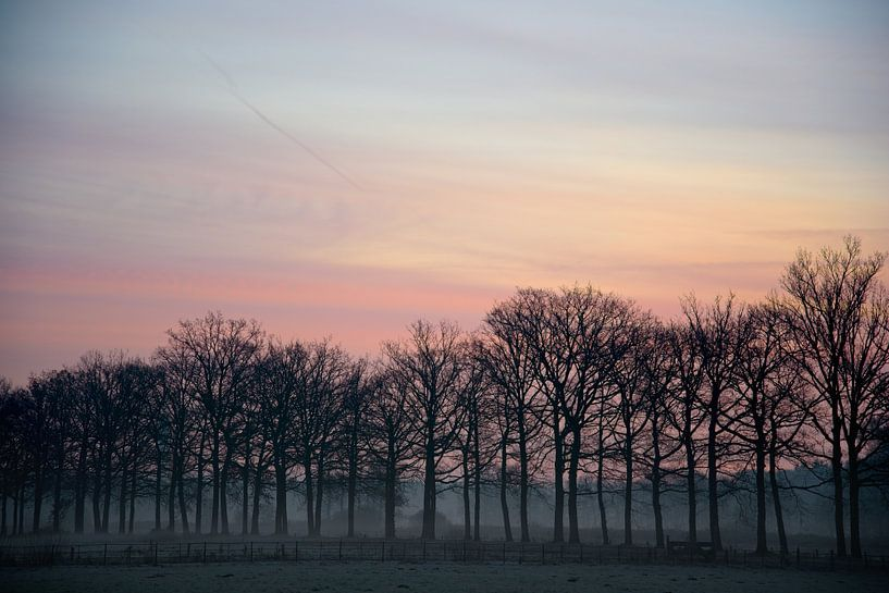 De zon komt op! van Jaap Kloppenburg