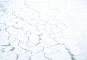 Eis-Muster von Charlotte Jalvingh