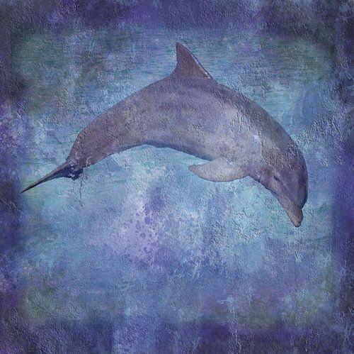 Dolfijn von Sigrid Klop