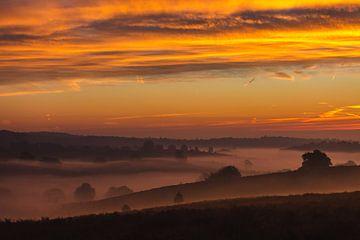 Sonnenaufgang auf der Veluwe von Jarno Dorst