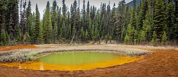 Een van de Paint Pots in Kootenay Nationaal Park, Canada van Rietje Bulthuis