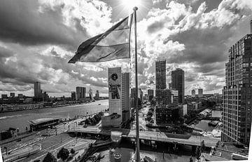 Rotterdam vanaf het Witte Huis van Peter Hooijmeijer