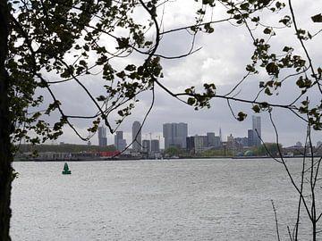 Rotterdam van Marco van't Woudt