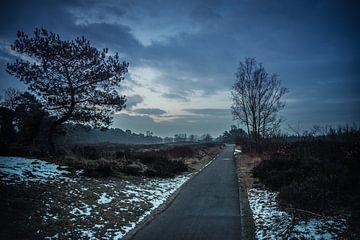 Cold sunday morning van Michel de Jonge