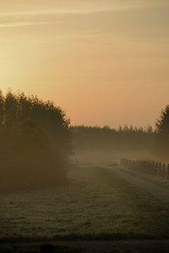 Wandelpad in de vroege ochtend in de mist. van Jurjen Jan Snikkenburg