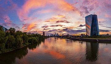 Frankfurtse skyline van Frank Herrmann