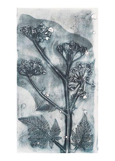 Botanische planten en bloemen afdruk Fluitenkruid  (gezien bij vtwonen) van Angela Peters