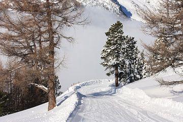 Ski piste Zwitserland van Yannick  van Loon