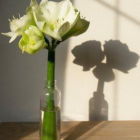 Witte lelies in fles met schaduw van Marion Moerland