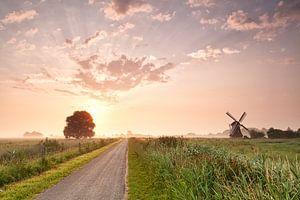 Dutch rural beauty