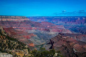 Uitzicht over de veelkleurige Grand Canyon van Rietje Bulthuis