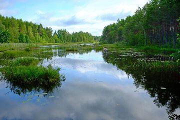 Zweeds landschap 010 sur Geertjan Plooijer