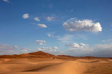 Mooie zandduinen onder dramatische hemel bij het landschap van de droogtewoestijn, Afrika van Tjeerd Kruse