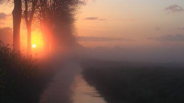 Een oerhollands landschap in de vroege morgen von Peter Vlasveld