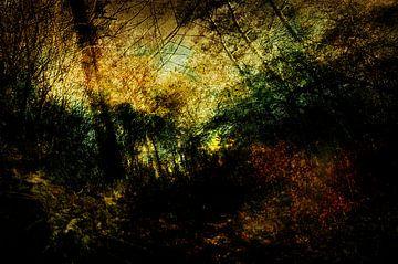 Die Drunense-Dünen bei Loon op Zand #02 von Peter Baak