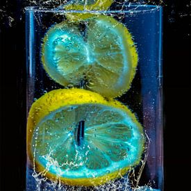 spiesje - citroenschijfjes in een potje van Christine Nöhmeier