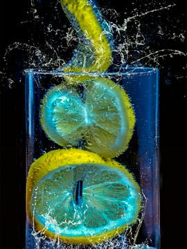spiesje - citroenschijfjes in een potje