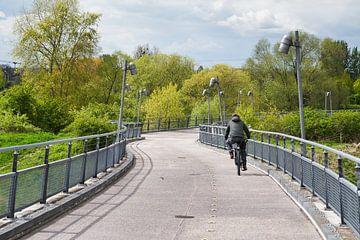 Hangbrug over de Elbe naar het Herrenkrugpark in Maagdenburg van Heiko Kueverling