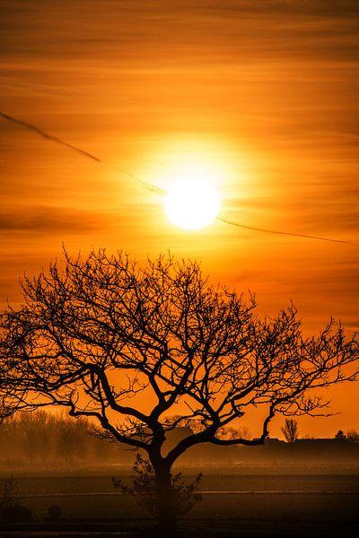 Zonsondergang in de Westhoek