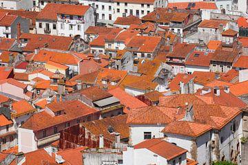 Dächer,   Altstadt , Coimbra, Beira Litoral, Regio Centro, Portugal