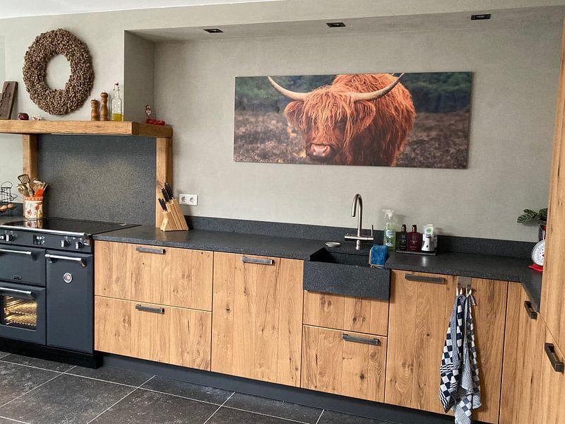 Photo de nos clients: Portrait d'un bétail des montagnes écossaises sur Sjoerd van der Wal, sur bois