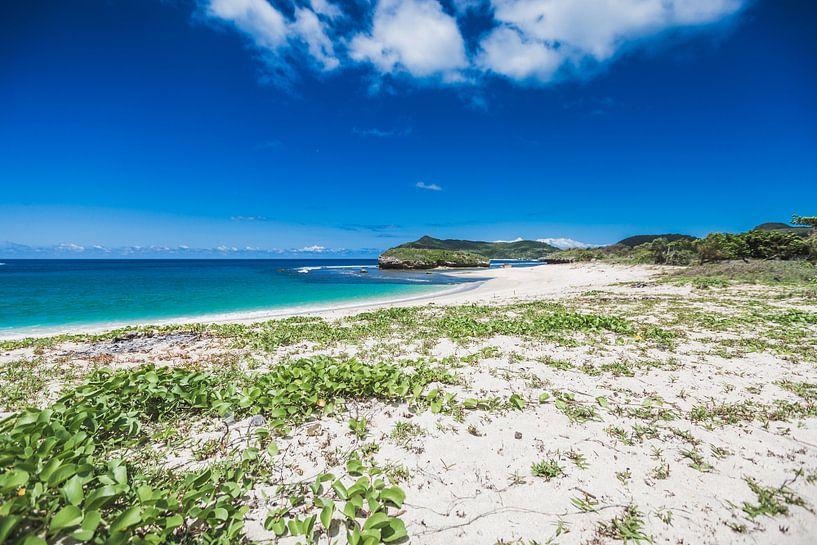 Sumbawa strand van Andy Troy