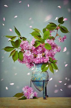 Kirschblüten Stillleben