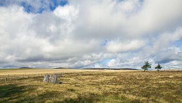 Landschap in de Franse Auvergne sur Pieter Wolthoorn