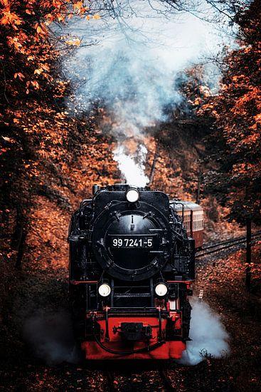 Dampflokomotive im Herbstwald