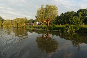 Vroege ochtend op de Kromme Rijn van