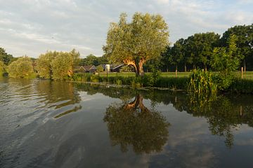 Vroege ochtend op de Kromme Rijn van Marijke van Eijkeren