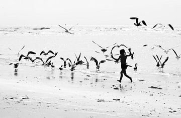 Vögel jagen von Eus Driessen