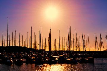 Evening Sun van Kees Schouw