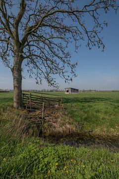 Schuur in weiland 02 von Moetwil en van Dijk - Fotografie
