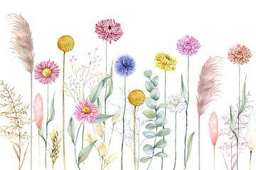 Fleurs séchées sur Geertje Burgers
