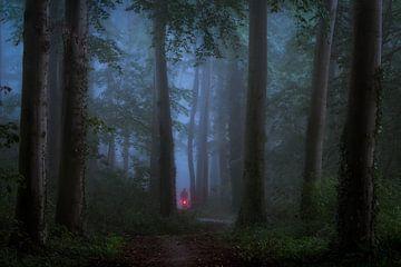 Fietsen in het donkere bos von Edwin Mooijaart