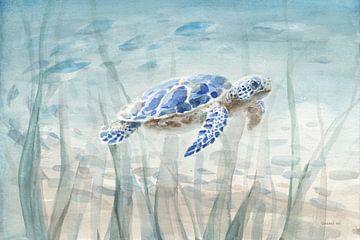 Onderzeese schildpad, Danhui Nai van Wild Apple