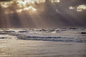 Strand van texel van Portrait of Holland
