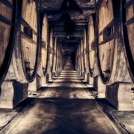 authentieke wijnkelder met oude wijnvaten van eric van der eijk