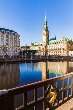 Kleine Alster und das Rathaus in Hamburg von Werner Dieterich