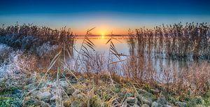 Winter Sunset van